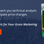 Maximize Your Harvest with Grain Futures Trading