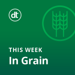 Friday AM in Grain and Oilseeds 11/20
